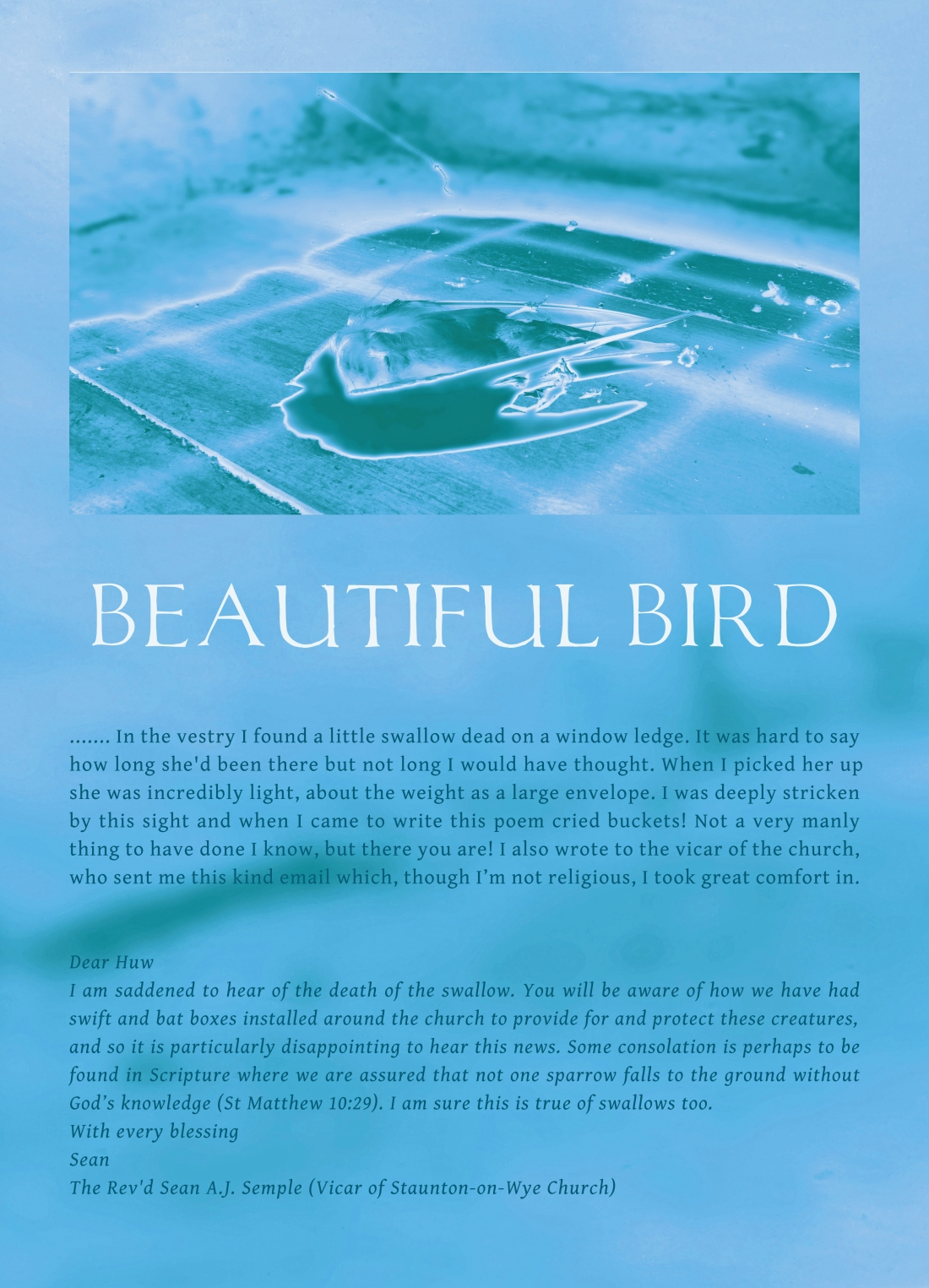 BEAUTIFUL BIRD - TITLE PAGE